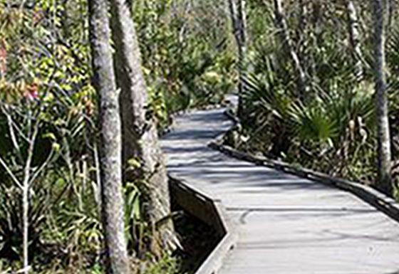 Appalachian Trail Walkway